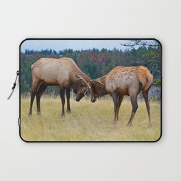 Bull elk in the rut season in Jasper National Park Laptop Sleeve