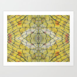 Cell Structure  Art Print