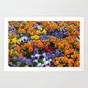 Pancy Flower 2 by binovska