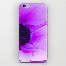 Pink Poppy Anemone I iPhone & iPod Skin