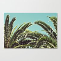 palms Canvas Prints featuring Palms by Lawson Images