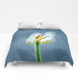 White withering tulip flower Comforters
