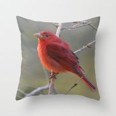 A Summer Tananger Throw Pillow