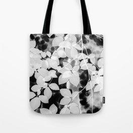 Fagus tortuosa white Tote Bag