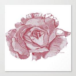 Queen Elizabeth Rose  Canvas Print