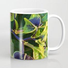 Shoo Fly - Apple of Peru - Nicandra Coffee Mug