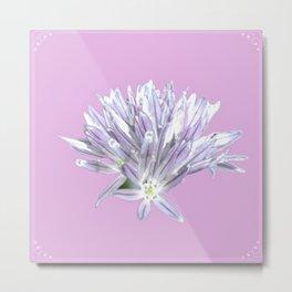 Flower | Pink Chive Floral | Nadia Bonello Metal Print