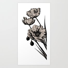 Beige Poppies Art Print