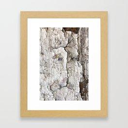 White Decay I Framed Art Print