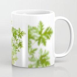 Pelargonium citrosum plant Coffee Mug