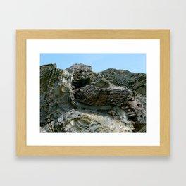 Beavertail Folds Framed Art Print
