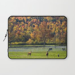 Spectacular fall color Laptop Sleeve