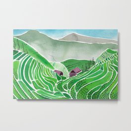 Terraced Rice Paddy Fields Metal Print