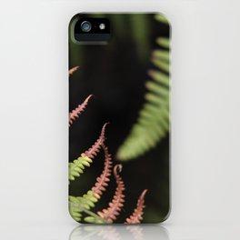 Ferns. Garajonay National Park iPhone Case