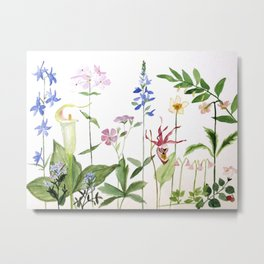 Botanical Garden Flower Wildflower Watercolor Art Metal Print
