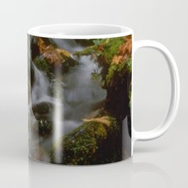 Forest Creek Amongst The Leaves Coffee Mug