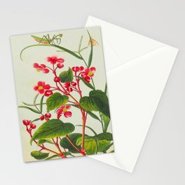 Joseph Buc'hoz -1776 Precious collection and illumination of t beautiful and curious flowers Stationery Cards