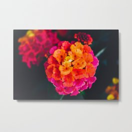 Color Pop Flower Metal Print