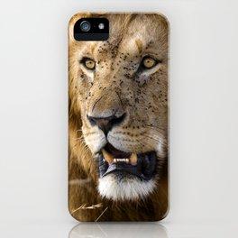 Lion, Masai Mara iPhone Case