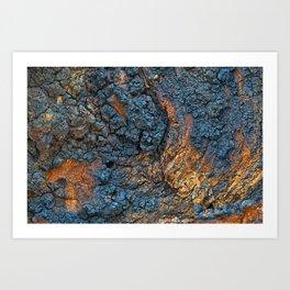 Charred Wood Texture Art Print