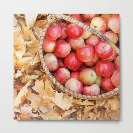 Fall apples Metal Print
