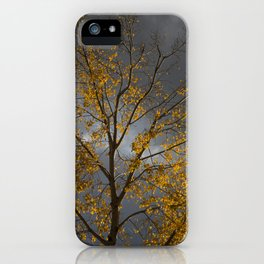 Scenes from the fall iPhone Case
