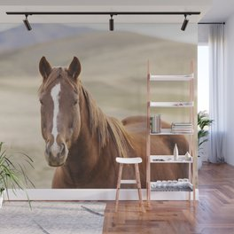 Colorful Western Horse Photo Wall Mural