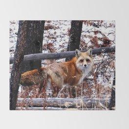 Winter Fox Throw Blanket