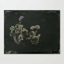 wet plate botanicals #1 Canvas Print