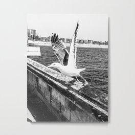 Seagull Taking Flight B&W // California West Coast Pier Vibes Beach Ocean Surf City USA Metal Print