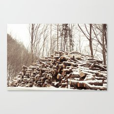 dead forest Canvas Print