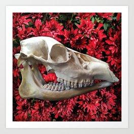 Cama de Flores Art Print