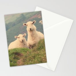 Sheep In The Wild Nature- Landscape Photography  Stationery Cards