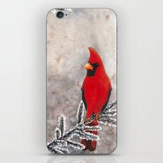 The Red Cardinal in winter iPhone & iPod Skin