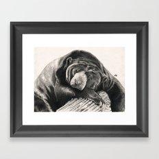 Lullaby... Framed Art Print