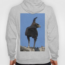 Long Crested Eagle Hoody