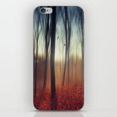 Crying Lights iPhone & iPod Skin