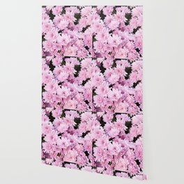A Sea of Light Pink Chrysanthemums #1 #floral #art #Society6 Wallpaper