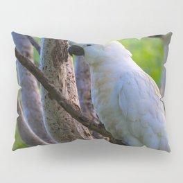 White Cockatoos Pillow Sham