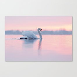 Serenity  .:. Mute Swan at Sunset Canvas Print