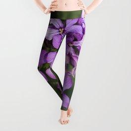 Purple Honesty Leggings