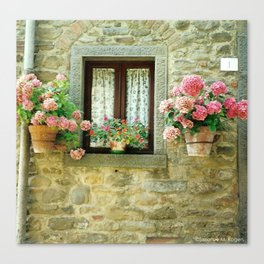 Cortona ~ Tuscan Country Cottage Window Canvas Print