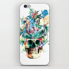 Skull - Parrots iPhone & iPod Skin