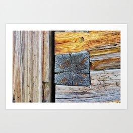 Old log cabin wooden wall Art Print
