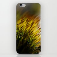 moss iPhone & iPod Skins featuring Moss by Digital Dreams