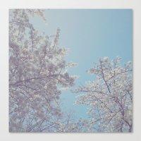 sakura Canvas Prints featuring Sakura by Luke J