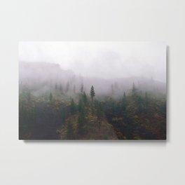 Fish Creek, Montana Metal Print