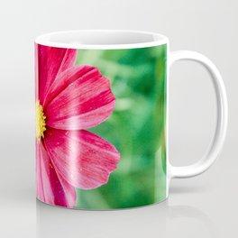 Cosmos Flower in the Garden Coffee Mug