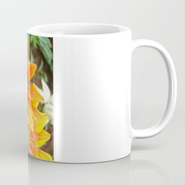 Vibrant Yellow and Vermillion Gazania Rigens Flower Coffee Mug
