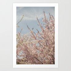 Sweet & Blue Art Print